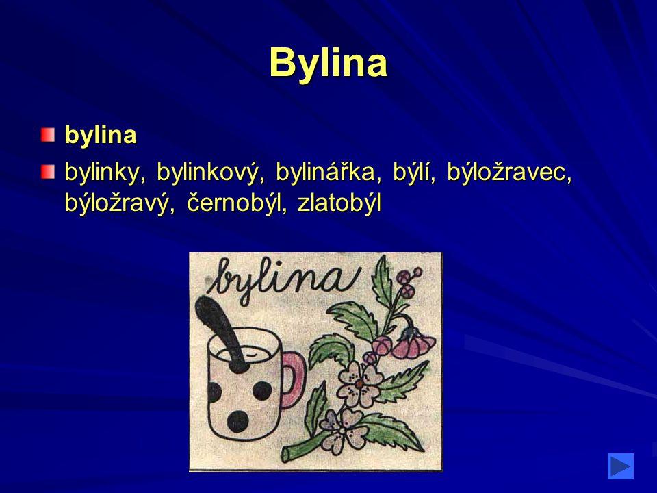 Bylina bylina bylinky, bylinkový, bylinářka, býlí, býložravec, býložravý, černobýl, zlatobýl