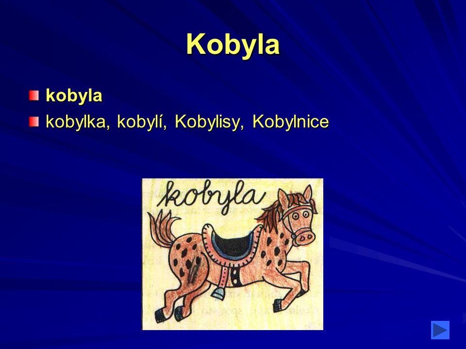 Kobyla kobyla kobylka, kobylí, Kobylisy, Kobylnice