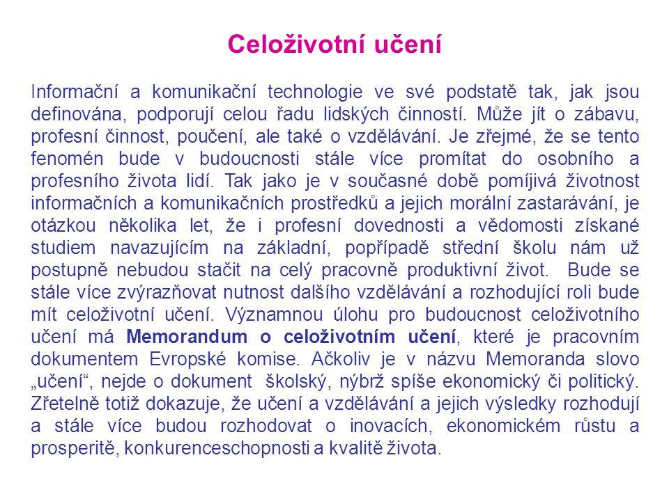 Informační a komunikační technologie ve své podstatě tak, jak jsou definována, podporují celou řadu lidských činností. Může jít o zábavu, profesní čin