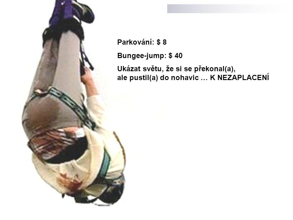 Parkování: $ 8 Bungee-jump: $ 40 Ukázat světu, že si se překonal(a), ale pustil(a) do nohavic … K NEZAPLACENÍ