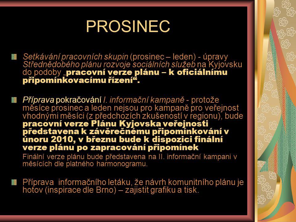 LEDEN 2010 Zajistit publicitu I.