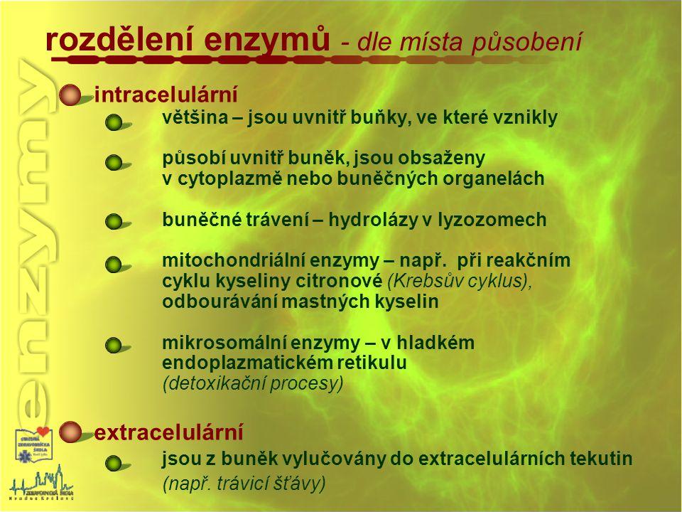 rozdělení enzymů - dle místa působení intracelulární většina – jsou uvnitř buňky, ve které vznikly působí uvnitř buněk, jsou obsaženy v cytoplazmě neb