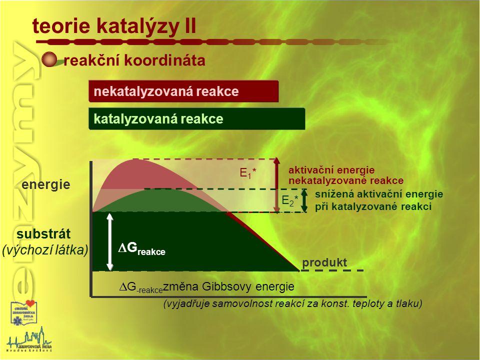 produkt reakční koordináta teorie katalýzy II substrát (výchozí látka) energie  G -reakce změna Gibbsovy energie (vyjadřuje samovolnost reakcí za kon