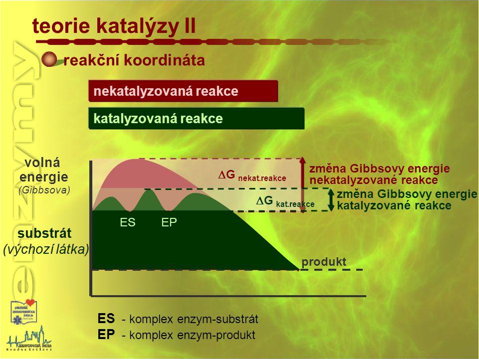 produkt reakční koordináta teorie katalýzy II substrát (výchozí látka) volná energie (Gibbsova) ES - komplex enzym-substrát EP - komplex enzym-produkt