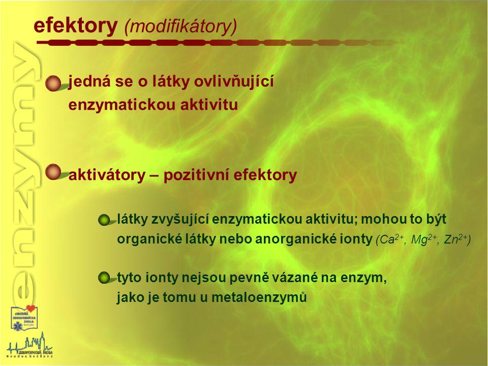 efektory (modifikátory) jedná se o látky ovlivňující enzymatickou aktivitu aktivátory – pozitivní efektory látky zvyšující enzymatickou aktivitu; moho