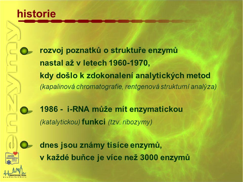 enzym biokatalyzátor - katalyzátor biochemické reakce v živých organizmech, jeho struktura je zakódována v DNA biomakromolekula - proteiny globulární struktura, Mr 10 4 – 10 6 jednoduché enzymy tvořené jen bílkovinou struktura
