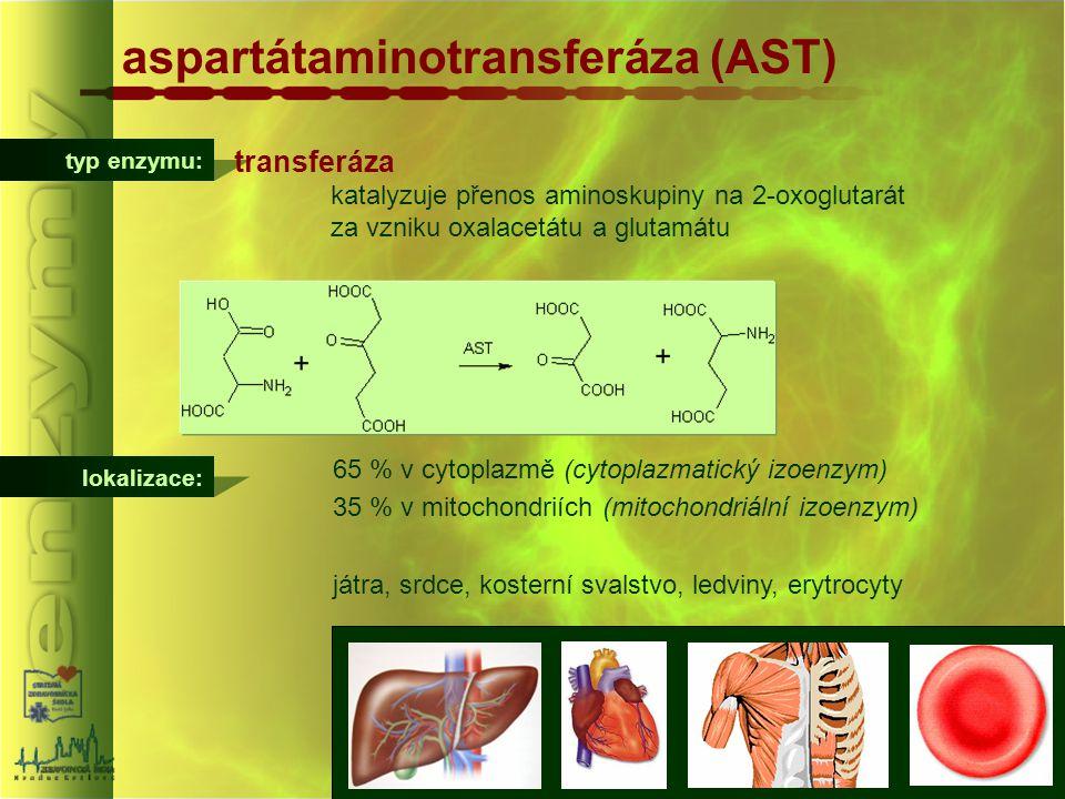 typ enzymu: aspartátaminotransferáza (AST) lokalizace: 65 % v cytoplazmě (cytoplazmatický izoenzym) 35 % v mitochondriích (mitochondriální izoenzym) j
