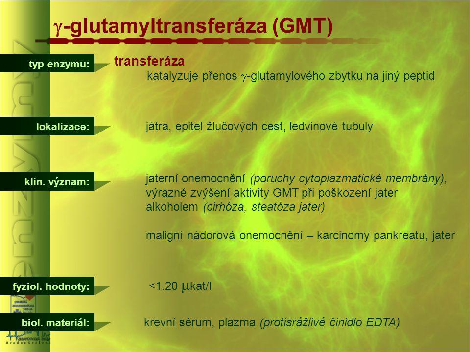 typ enzymu:  -glutamyltransferáza (GMT) transferáza katalyzuje přenos  -glutamylového zbytku na jiný peptid lokalizace: játra, epitel žlučových cest
