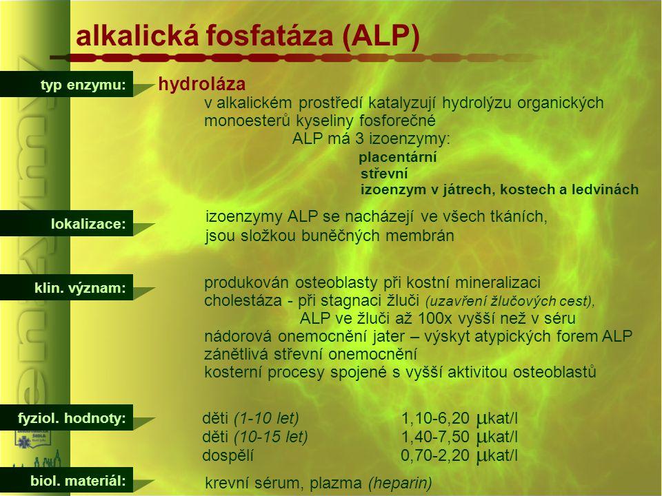 typ enzymu: alkalická fosfatáza (ALP) hydroláza v alkalickém prostředí katalyzují hydrolýzu organických monoesterů kyseliny fosforečné ALP má 3 izoenz