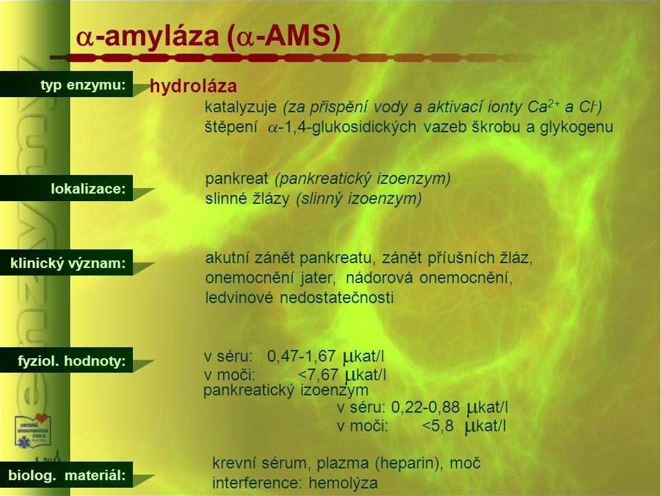typ enzymu:  -amyláza (  -AMS) hydroláza katalyzuje (za přispění vody a aktivací ionty Ca 2+ a Cl - ) štěpení  -1,4-glukosidických vazeb škrobu a g