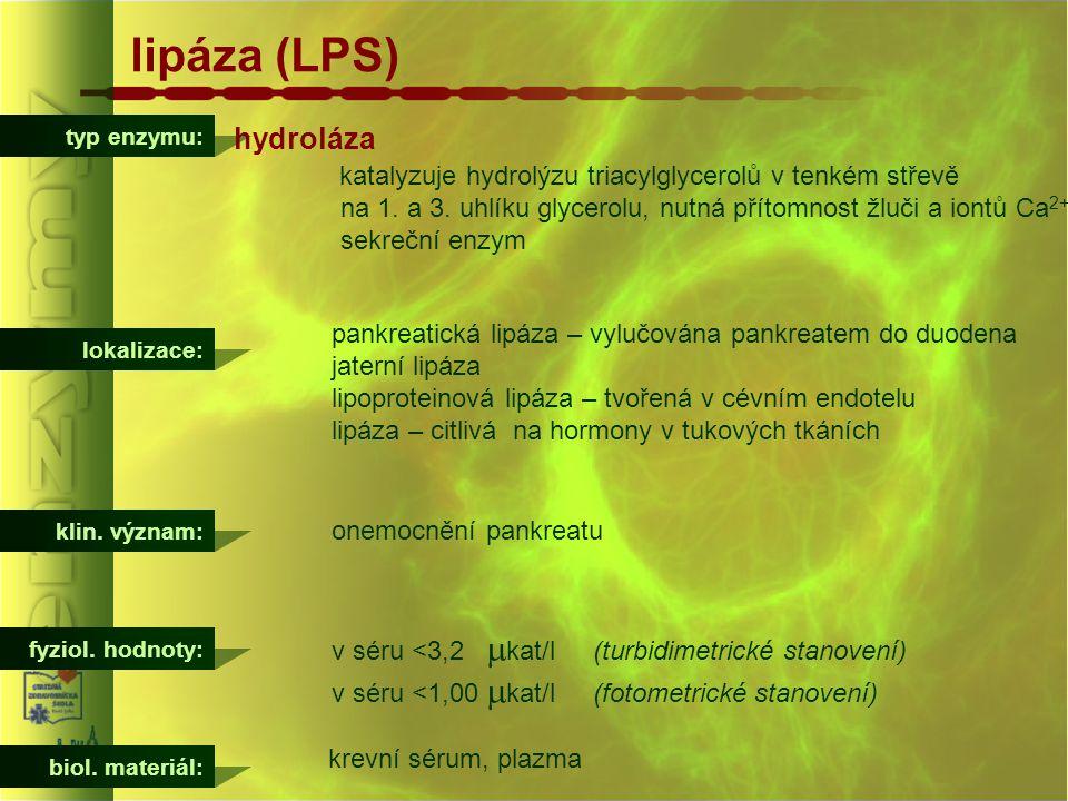 typ enzymu: lipáza (LPS) hydroláza katalyzuje hydrolýzu triacylglycerolů v tenkém střevě na 1. a 3. uhlíku glycerolu, nutná přítomnost žluči a iontů C