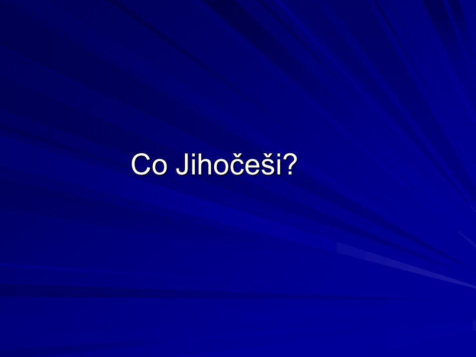 Co Jihočeši?