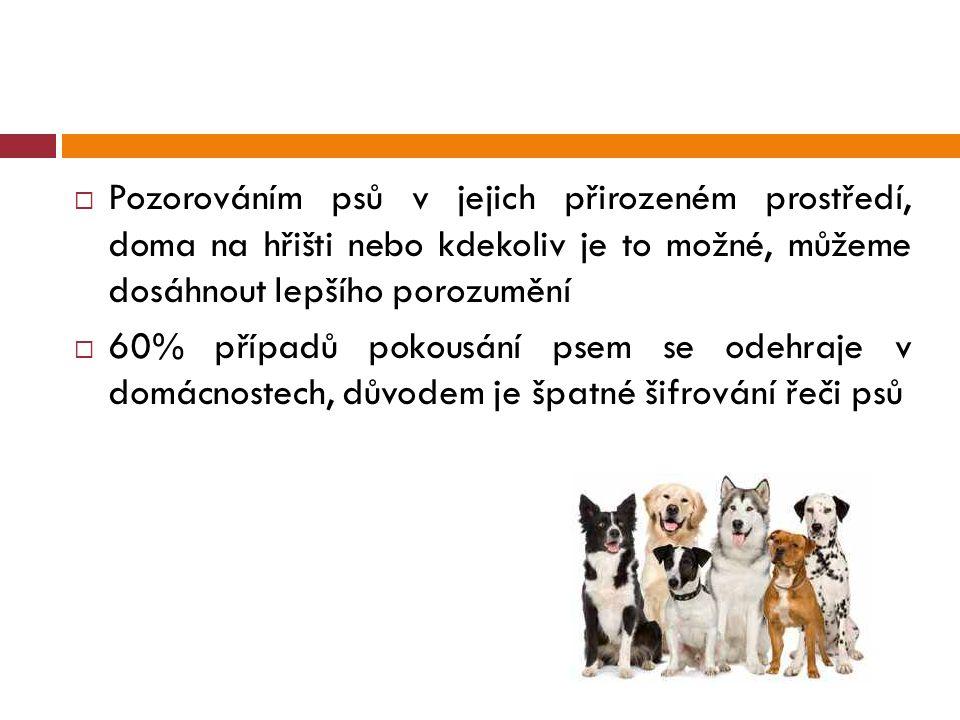  Pozorováním psů v jejich přirozeném prostředí, doma na hřišti nebo kdekoliv je to možné, můžeme dosáhnout lepšího porozumění  60% případů pokousání