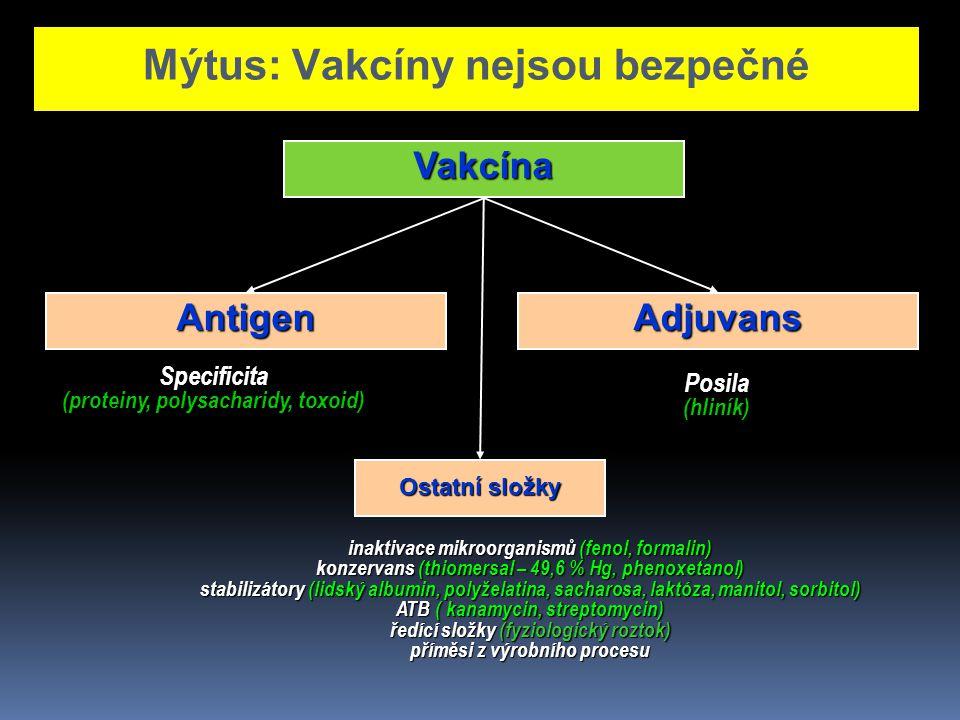Vakcína Ostatní složky inaktivace mikroorganismů (fenol, formalin) konzervans (thiomersal – 49,6 % Hg, phenoxetanol) stabilizátory (lidský albumin, po