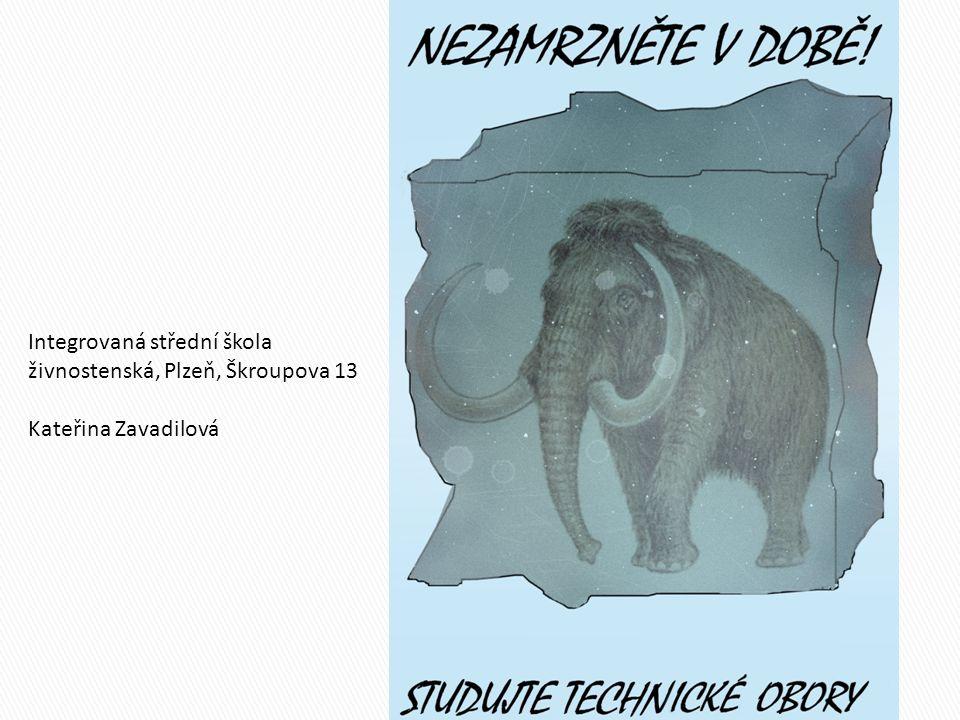 Integrovaná střední škola živnostenská, Plzeň, Škroupova 13 Kateřina Zavadilová