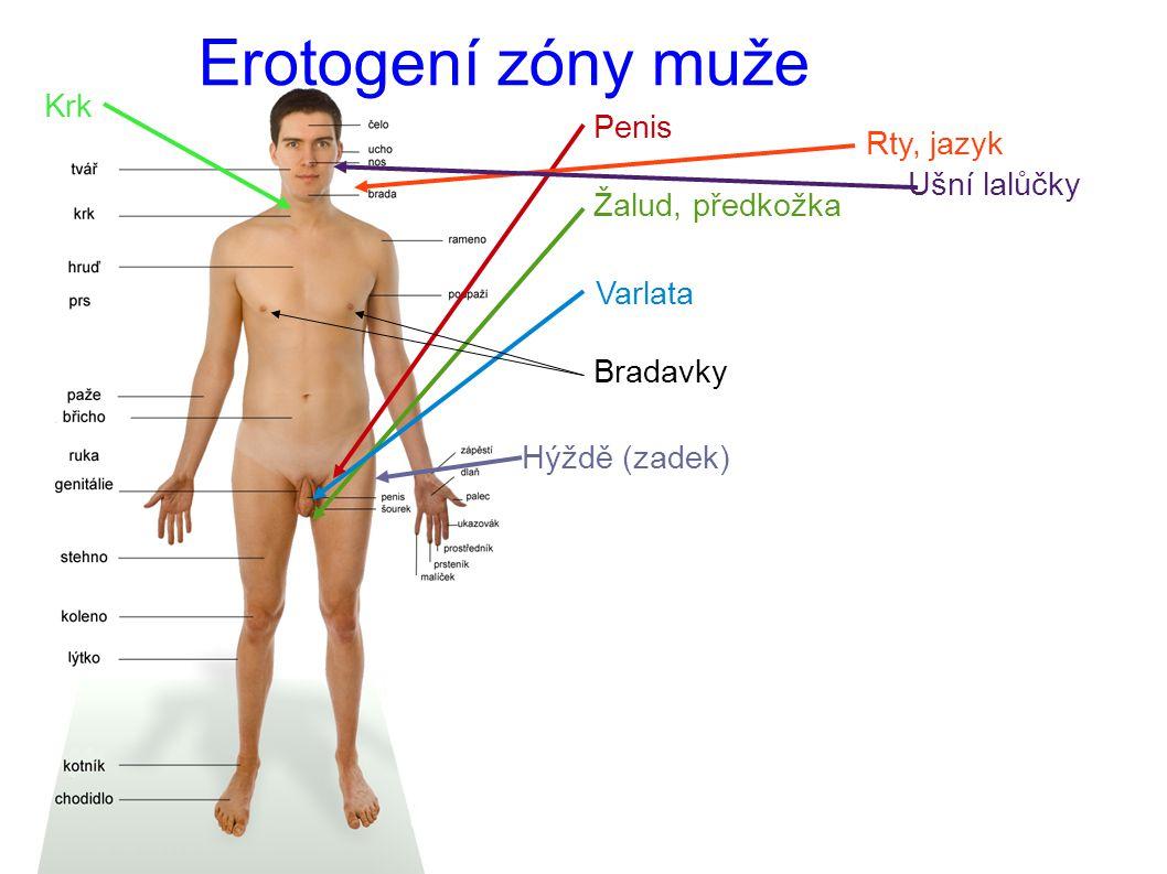 Erotogení zóny ženy
