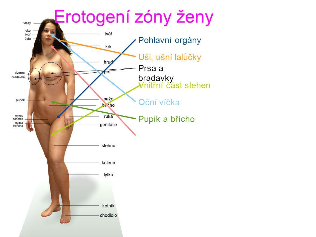 Erotogení zóny ženy Pohlavní orgány Uši, ušní lalůčky Prsa a bradavky Vnitřní část stehen Oční víčka Pupík a břícho Rty, jazyk a krk