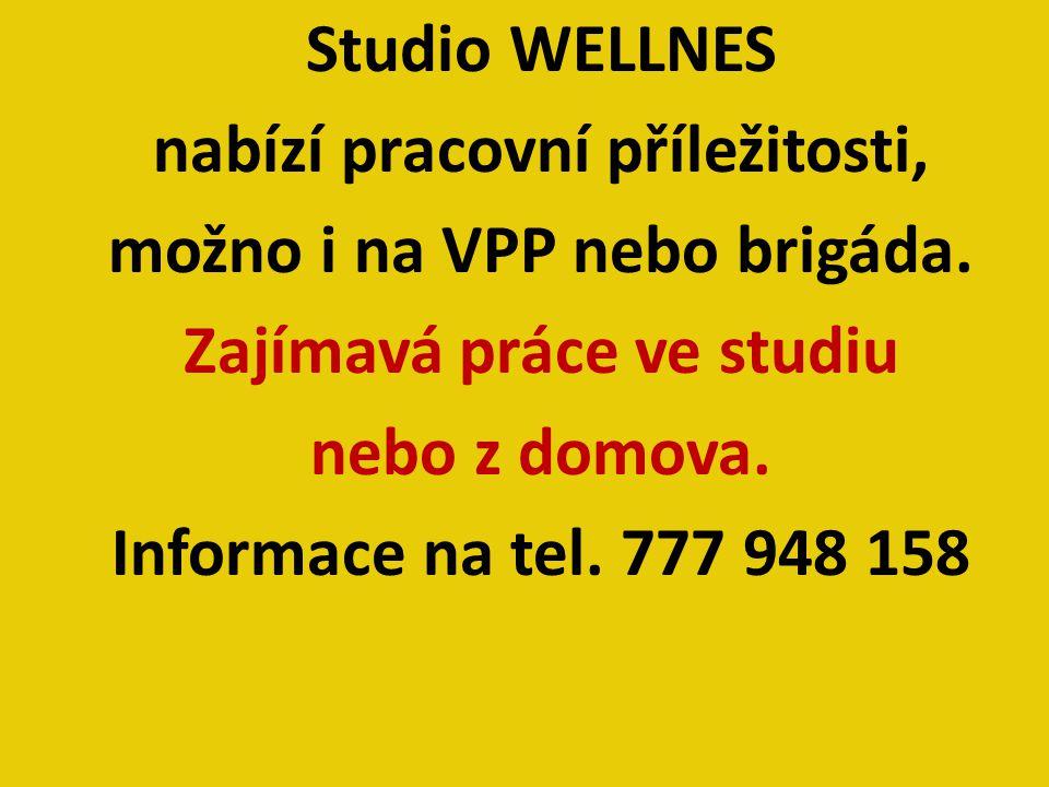 Studio WELLNES nabízí pracovní příležitosti, možno i na VPP nebo brigáda. Zajímavá práce ve studiu nebo z domova. Informace na tel. 777 948 158