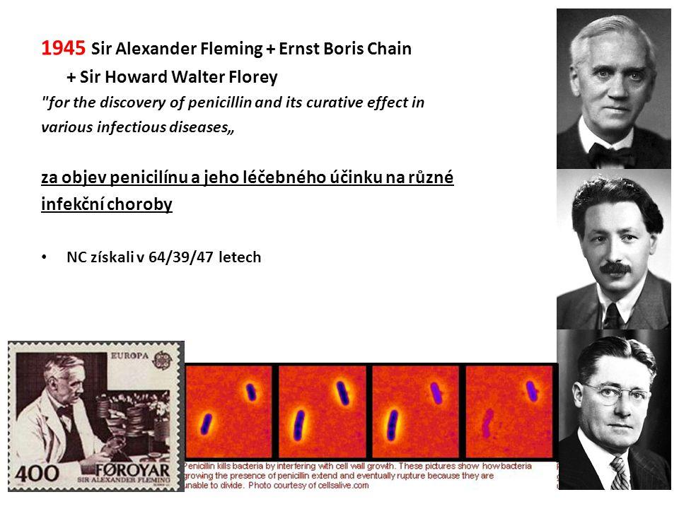 1945 Sir Alexander Fleming + Ernst Boris Chain + Sir Howard Walter Florey