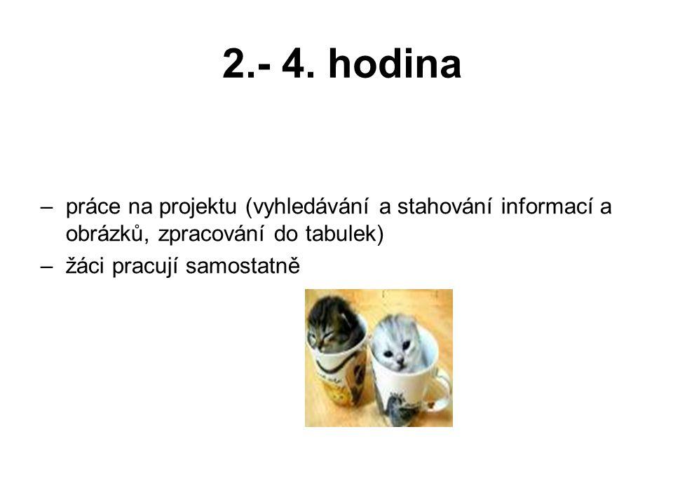 2.- 4. hodina –práce na projektu (vyhledávání a stahování informací a obrázků, zpracování do tabulek) –žáci pracují samostatně