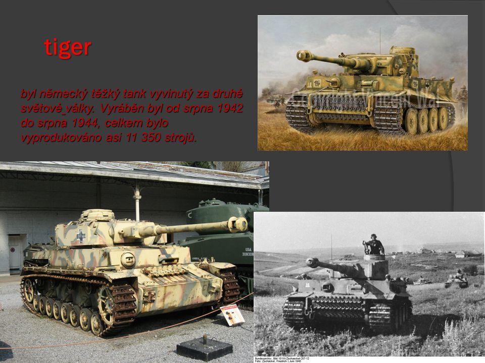 Výzbroj a technika osy tanky