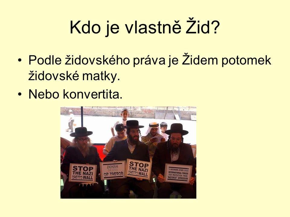 Kdo je vlastně Žid? •Podle židovského práva je Židem potomek židovské matky. •Nebo konvertita.