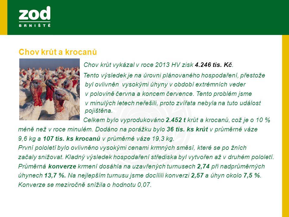 Chov krůt vykázal v roce 2013 HV zisk 4.246 tis. Kč. Tento výsledek je na úrovni plánovaného hospodaření, přestože byl ovlivněn vysokými úhyny v obdob