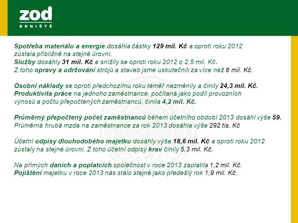 Spotřeba materiálu a energie dosáhla částky 129 mil. Kč a oproti roku 2012 zůstala přibližně na stejné úrovni. Služby dosáhly 31 mil. Kč a snížily se