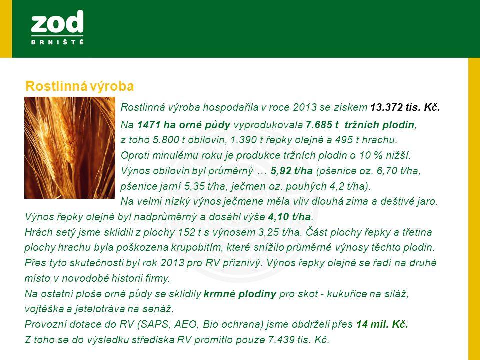 Rostlinná výroba hospodařila v roce 2013 se ziskem 13.372 tis. Kč..Na 1471 ha orné půdy vyprodukovala 7.685 t tržních plodin, z toho 5.800 t obilovin,