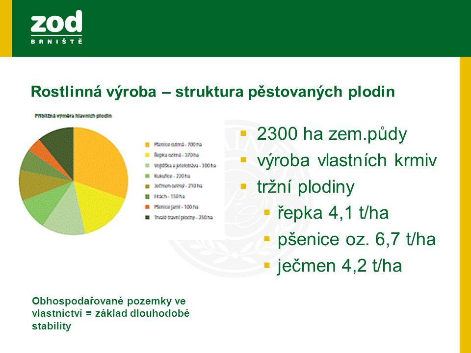 Obhospodařované pozemky ve vlastnictví = základ dlouhodobé stability  2300 ha zem.půdy  výroba vlastních krmiv  tržní plodiny  řepka 4,1 t/ha  pšenice oz.