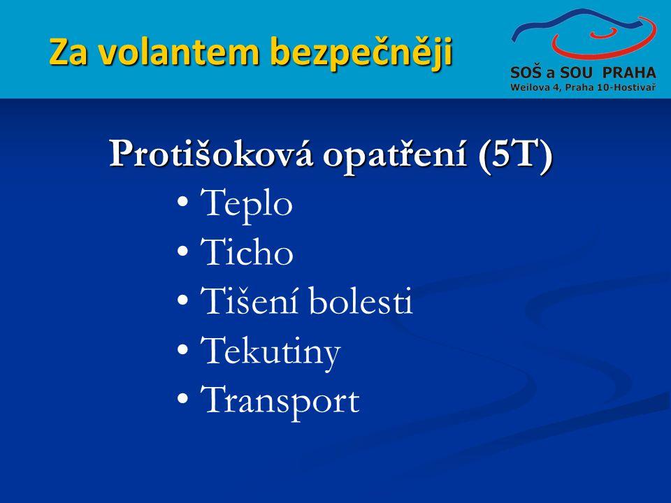 Za volantem bezpečněji Protišoková opatření (5T) • Teplo • Ticho • Tišení bolesti • Tekutiny • Transport