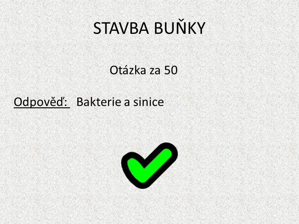 STAVBA BUŇKY Otázka za 50 Odpověď: Bakterie a sinice