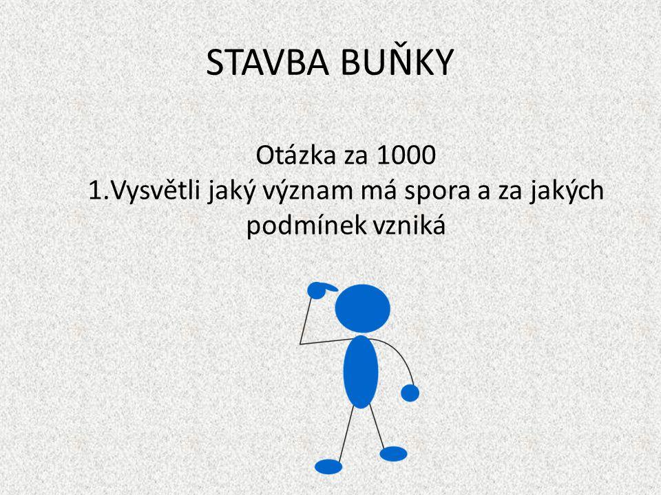 STAVBA BUŇKY Otázka za 1000 1.Vysvětli jaký význam má spora a za jakých podmínek vzniká