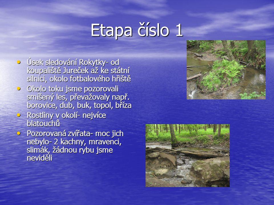 Etapa číslo 1 • Úsek sledování Rokytky- od koupaliště Jureček až ke státní silnici, okolo fotbalového hřiště • Okolo toku jsme pozorovali smíšený les, převažovaly např.