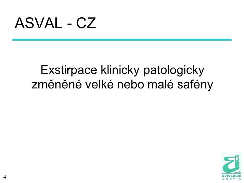 4 ASVAL - CZ Exstirpace klinicky patologicky změněné velké nebo malé safény