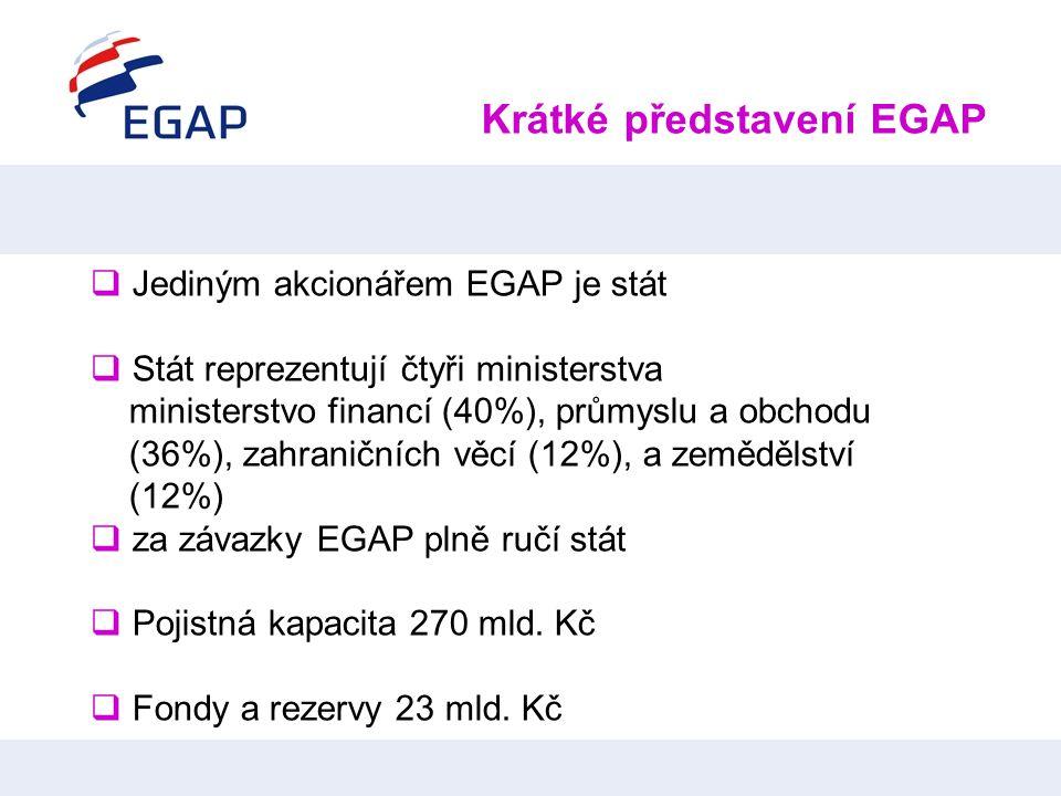 Krátké představení EGAP  Jediným akcionářem EGAP je stát  Stát reprezentují čtyři ministerstva ministerstvo financí (40%), průmyslu a obchodu (36%),