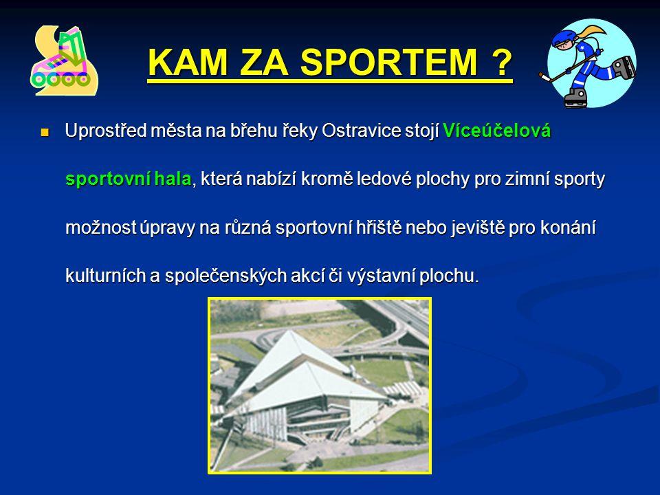 KAM ZA SPORTEM ?  Uprostřed města na břehu řeky Ostravice stojí Víceúčelová sportovní hala, která nabízí kromě ledové plochy pro zimní sporty sportov