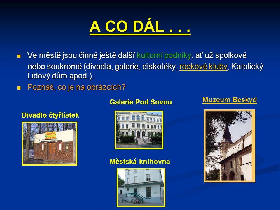 A CO DÁL...  Ve městě jsou činné ještě další kulturní podniky, ať už spolkové nebo soukromé (divadla, galerie, diskotéky, rockové kluby, Katolický Li