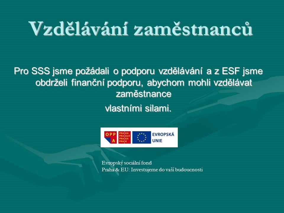 Vzdělávání zaměstnanců Pro SSS jsme požádali o podporu vzdělávání a z ESF jsme obdrželi finanční podporu, abychom mohli vzdělávat zaměstnance vlastními silami.