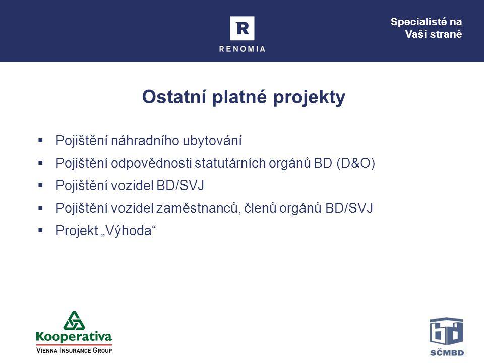 Specialisté na Vaší straně Ostatní platné projekty  Pojištění náhradního ubytování  Pojištění odpovědnosti statutárních orgánů BD (D&O)  Pojištění