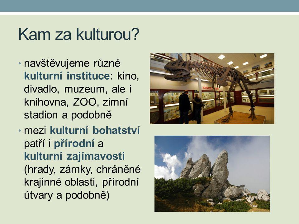 Kam za kulturou? • navštěvujeme různé kulturní instituce: kino, divadlo, muzeum, ale i knihovna, ZOO, zimní stadion a podobně • mezi kulturní bohatstv
