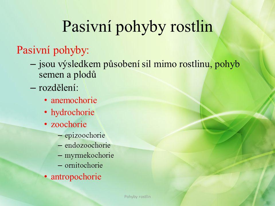 Pasivní pohyby rostlin Pasivní pohyby: – jsou výsledkem působení sil mimo rostlinu, pohyb semen a plodů – rozdělení: • anemochorie • hydrochorie • zoo