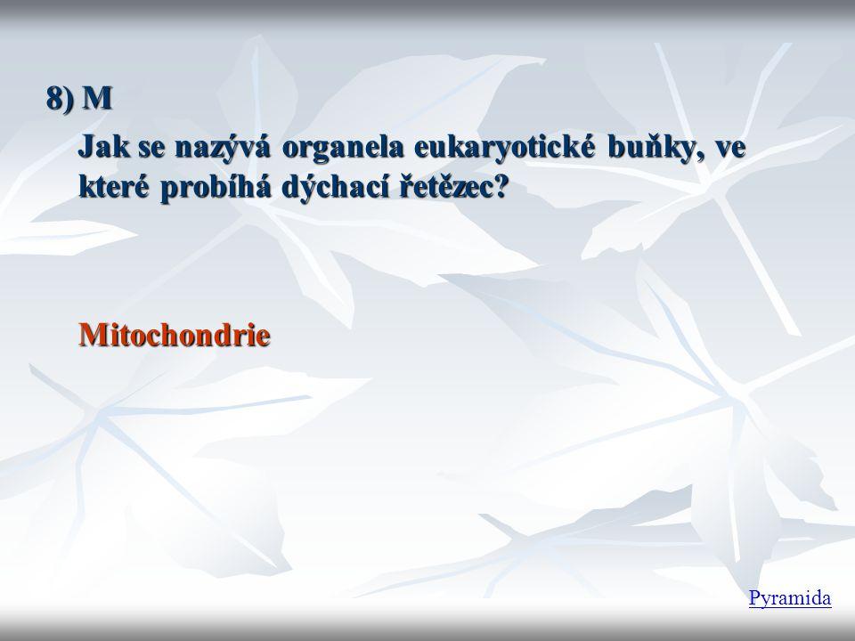 8) M Jak se nazývá organela eukaryotické buňky, ve které probíhá dýchací řetězec? Mitochondrie Pyramida