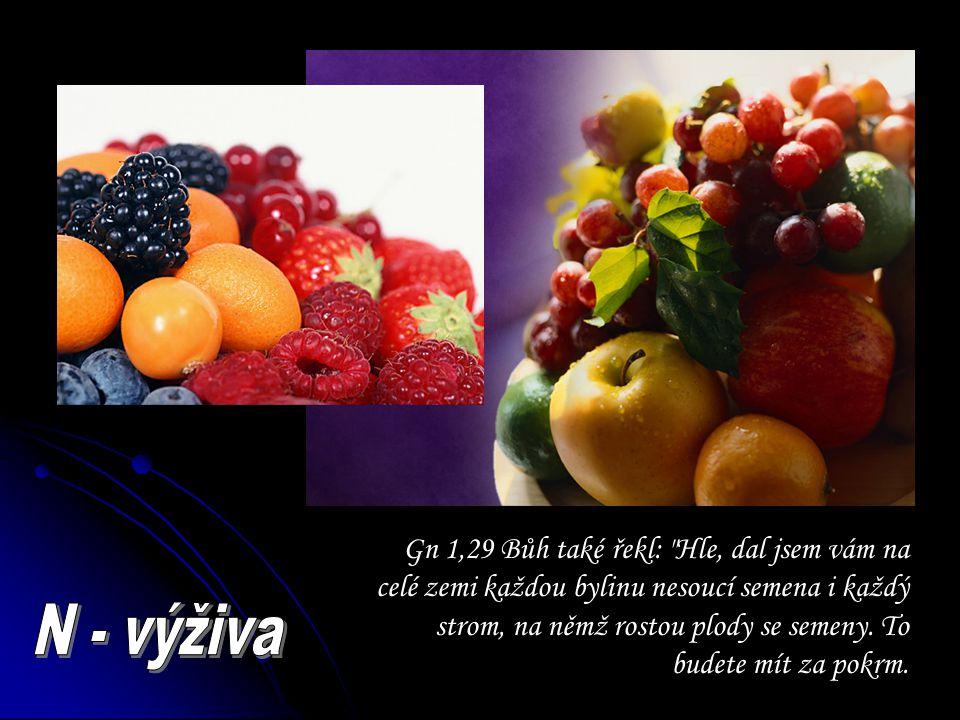 Gn 1,29 Bůh také řekl:
