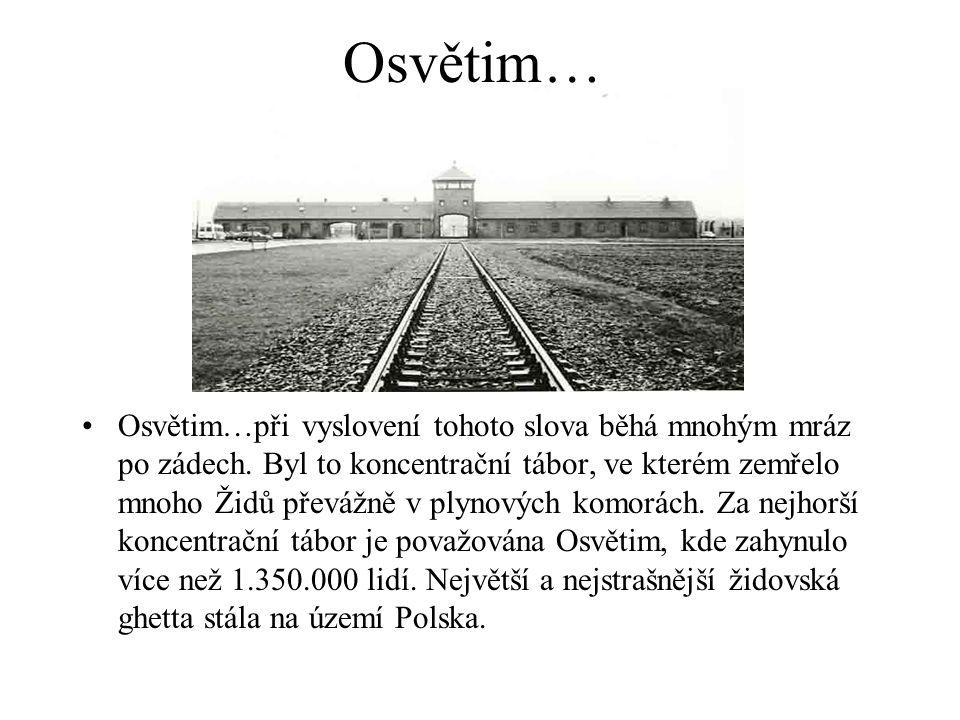 Terezín… •Terezín je největší bývalý koncentrační tábor na území ČR.
