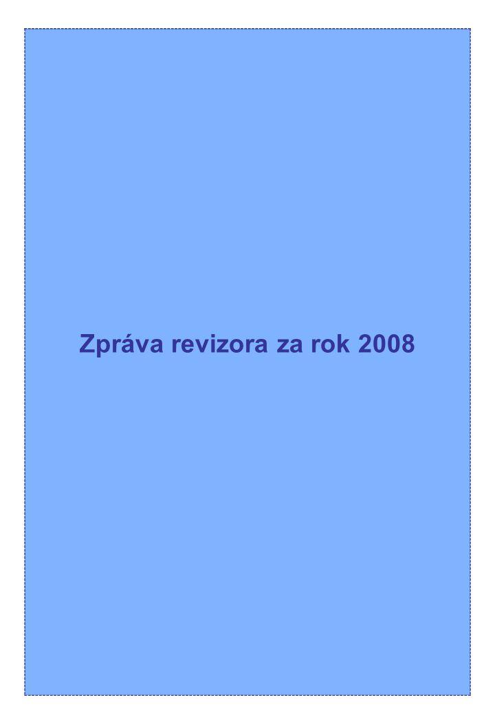 Zpráva revizora za rok 2008