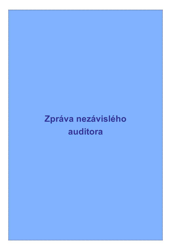 Zpráva nezávislého auditora