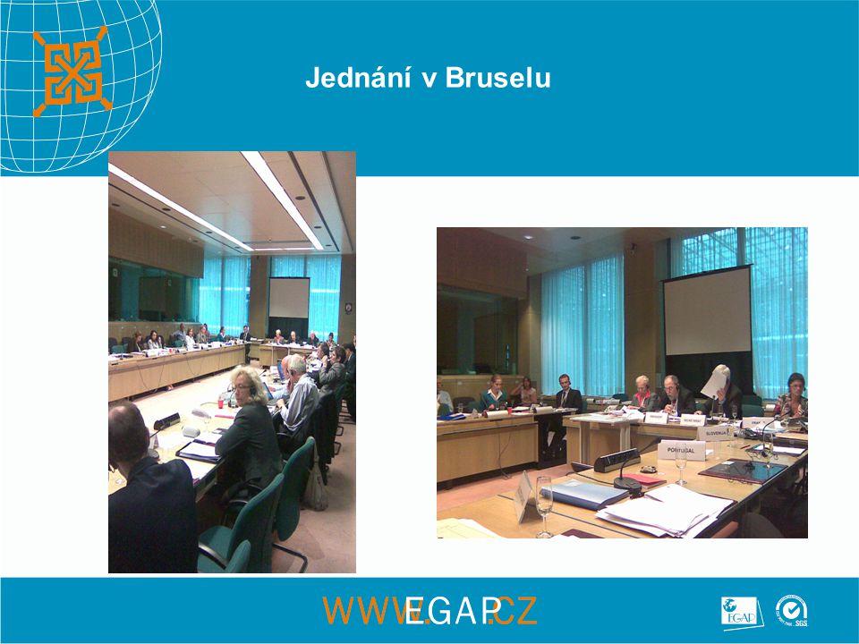 Jednání v Bruselu