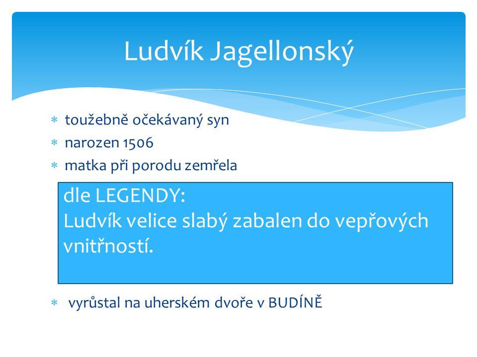  toužebně očekávaný syn  narozen 1506  matka při porodu zemřela  vyrůstal na uherském dvoře v BUDÍNĚ Ludvík Jagellonský dle LEGENDY: Ludvík velice slabý zabalen do vepřových vnitřností.
