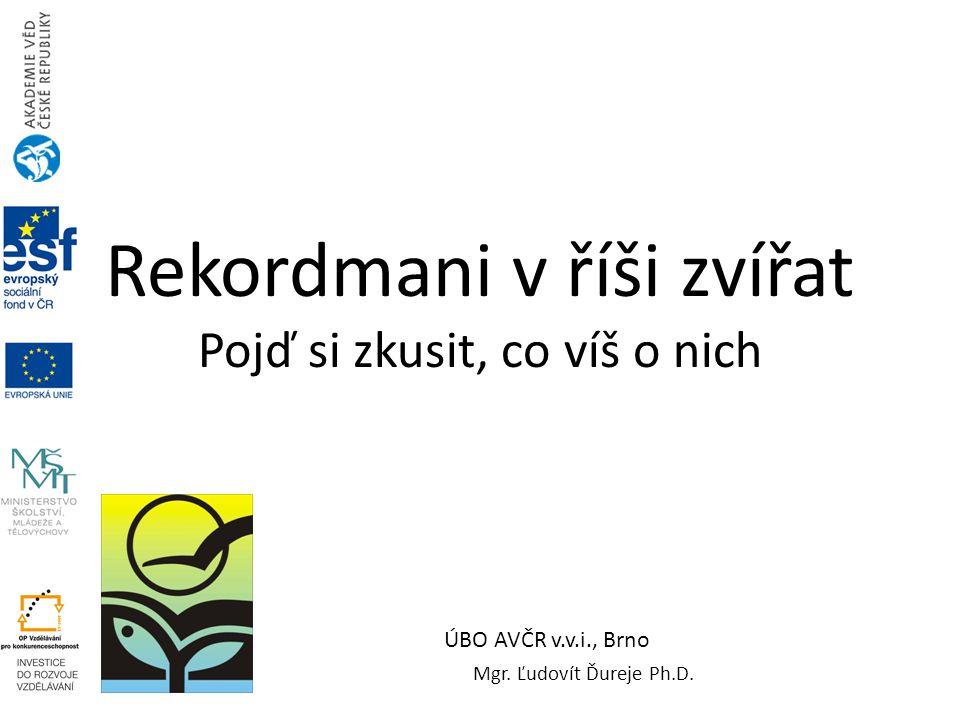 Rekordmani v říši zvířat Pojď si zkusit, co víš o nich Mgr. Ľudovít Ďureje Ph.D. ÚBO AVČR v.v.i., Brno